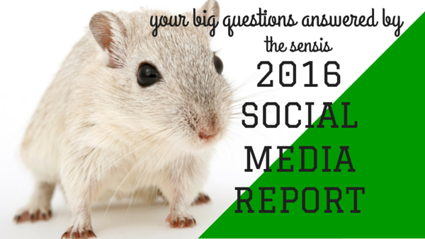 Your 7 Big Questions Answered By The 2016 Sensis Social Media Report